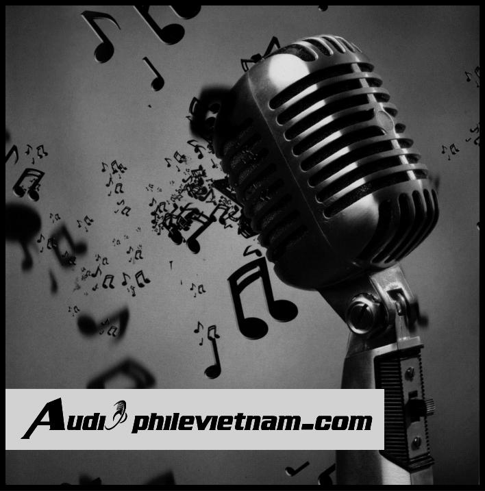 audiophilevietnam No.2
